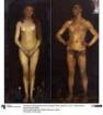 Menschenpaar (Homo-Sapiens-Tafeln)