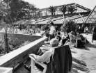 Hamburg. Internationale Gartenbauausstellung auf dem Gelände von Planten un Blomen 1963. Besucher ruhen sich vor den Tropengewächshäusern des Botanischen Garten aus, die sich noch auf dem ehemaligen Gelände des Gartens am Dammtor befinden