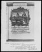 Flugschrift mit Illustrationen aus den Papstprophezeiungen mit antipäpstlichen Spottversen — Allegorische Darstellung von Papst Nikolaus 5., Folio 29recto