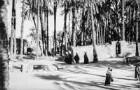 Dorfbewohner (HAPAG-Mittelmeerfahrt der Oceana Leonhardt 1929)
