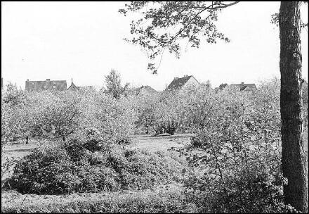 Havelse, Waldstraße / Nordenkamp