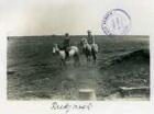 Island. Touristen der Hapag beim Ponyreiten in der Umgebung von Reykjavik