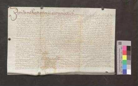 Arbogast und Hans von Schellenberg nebst der Stadt Hüfingen schließen einen Vertrag mit der Stadt Bräunlingen wegen ihrer Holzmarkung oder Mistelbrunnen.