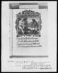 Flugschrift mit Illustrationen aus den Papstprophezeiungen mit antipäpstlichen Spottversen — Allegorische Darstellung von Papst Calixtus 3. (1455-1458), Folio 30recto