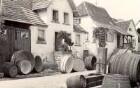 Albersweiler, Vorbereitung zur Weinlese.