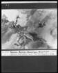 Ausschnitt: Mars und Venus