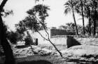 Dorf bei Luxor (HAPAG-Mittelmeerfahrt der Oceana Leonhardt 1929)
