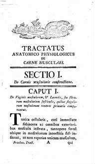 De carne musculari tractatus anatomico-physiologicus