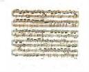 Sonate für das Piano Forte : No. 5 der Sonaten
