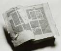 Biblia latina cum postillis