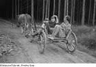 Renate Rössing mit einem Jungen und einem Mann auf einem Fuhrwerk