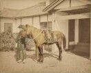 Samurai mit Pferd