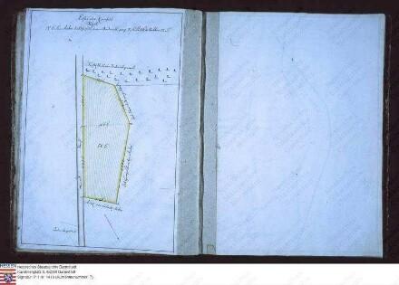 Flurbuch des Burghofguts zu Storndorf