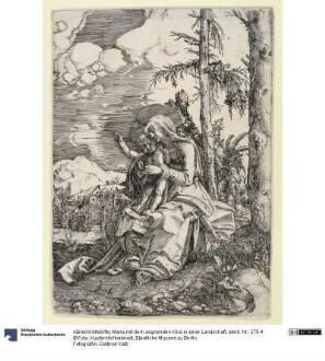 Maria mit dem segnenden Kind in einer Landschaft