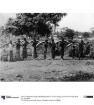 Träger mit Elfenbeinzähnen auf dem Wege vom Bakundumarkt