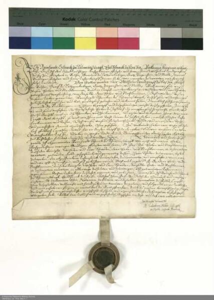 Revers Reinhard Schenck zu Schweinsberg bezüglich der Belehnung mit der Wüstung Niedlingen durch Wilhelm [V.], Landgraf von Hessen [Hessen-Kassel]