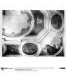 Blick auf die Decke der ehemaligen Naturalienkammer der Kunstkammer im Berliner Stadtschloss