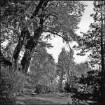 Im Ostereschfeld Nr. 3: Parkähnlicher                                        Garten
