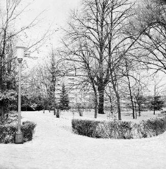 Kurpark: vorn Hecken: dahinter Grünflächen und Bäume: links Straßenlampe: im Hintergrund Wohnblocks