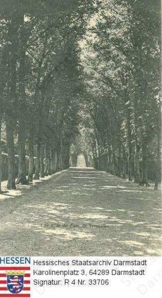 Frankreich, Versailles / Schlosspark, Allee
