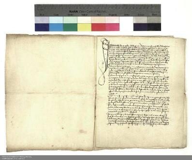Genehmigung durch Konrad [von Hanau], Abt von Fulda, des Verkaufs eines Guts in Obersalz durch Emmerich Zippur